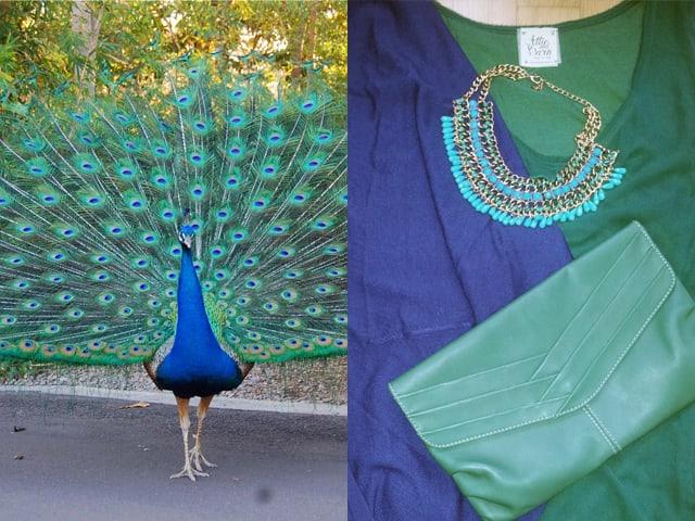 Outfit con i colori del pavone verdementa - Immagini pavone a colori ...