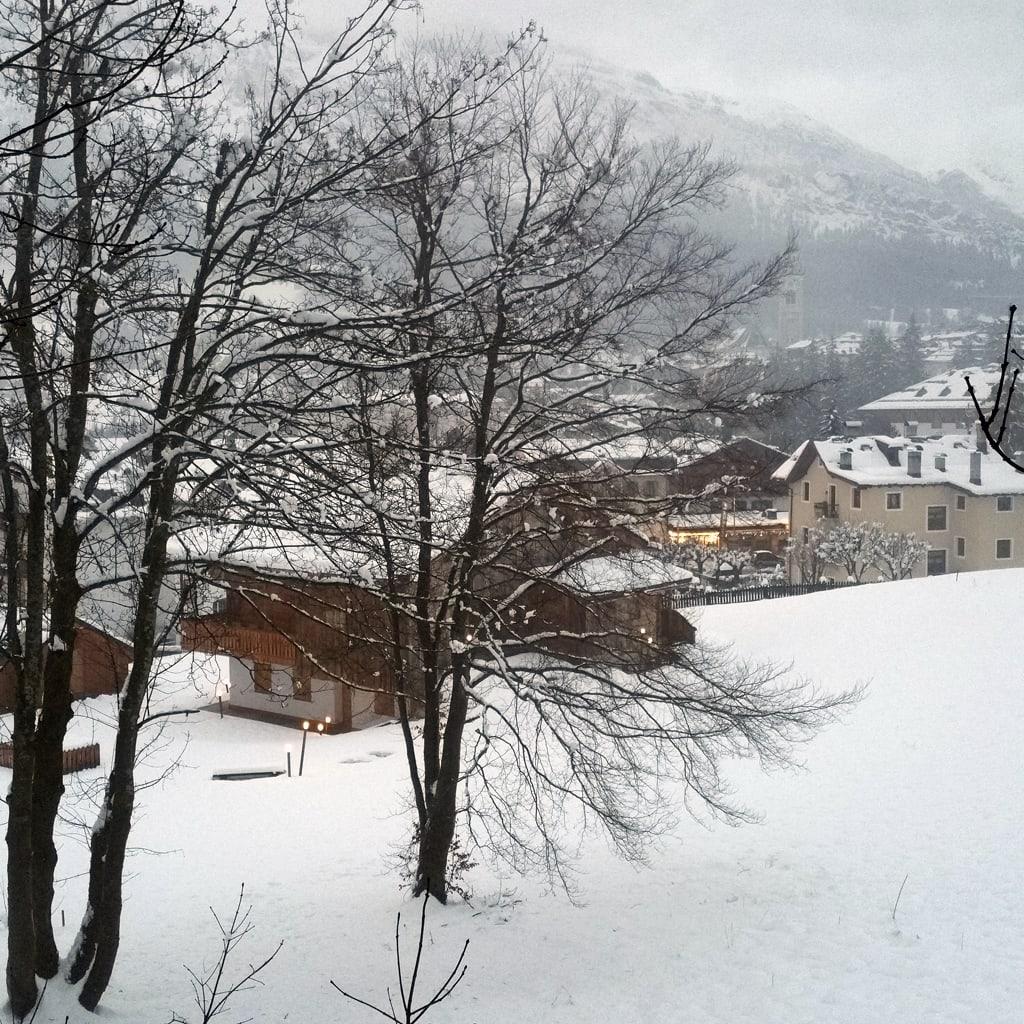 Cortina-9
